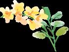 黄色のお花のイラスト